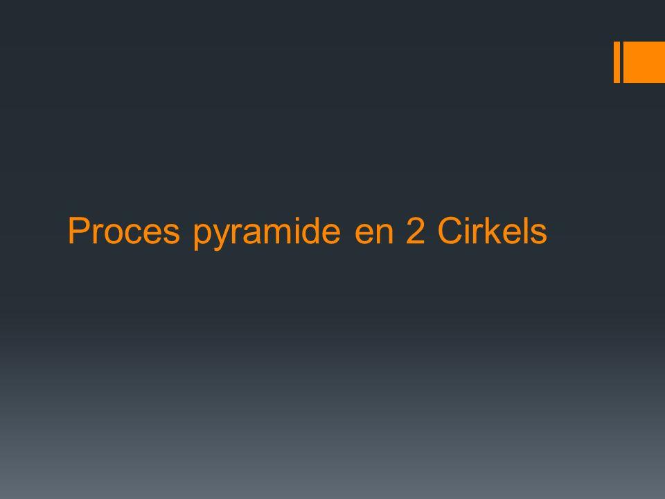 De proces pyramide Prof.In 't Veld beschrijft een proces in drie fases.