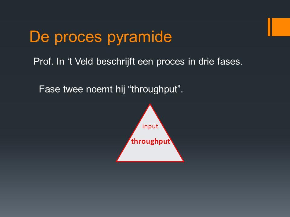 """De proces pyramide Prof. In 't Veld beschrijft een proces in drie fases. Fase twee noemt hij """"throughput"""". input throughput"""