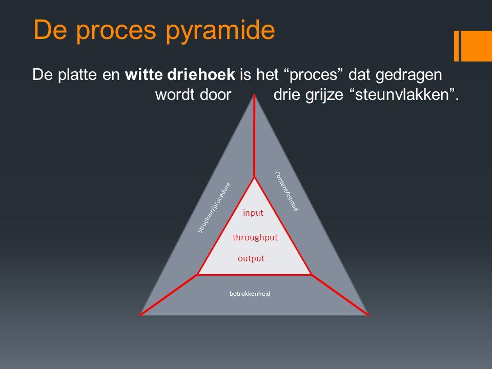 """De proces pyramide De platte en witte driehoek is het """"proces"""" dat gedragen wordt door drie grijze """"steunvlakken"""". input throughput output Structuur/p"""
