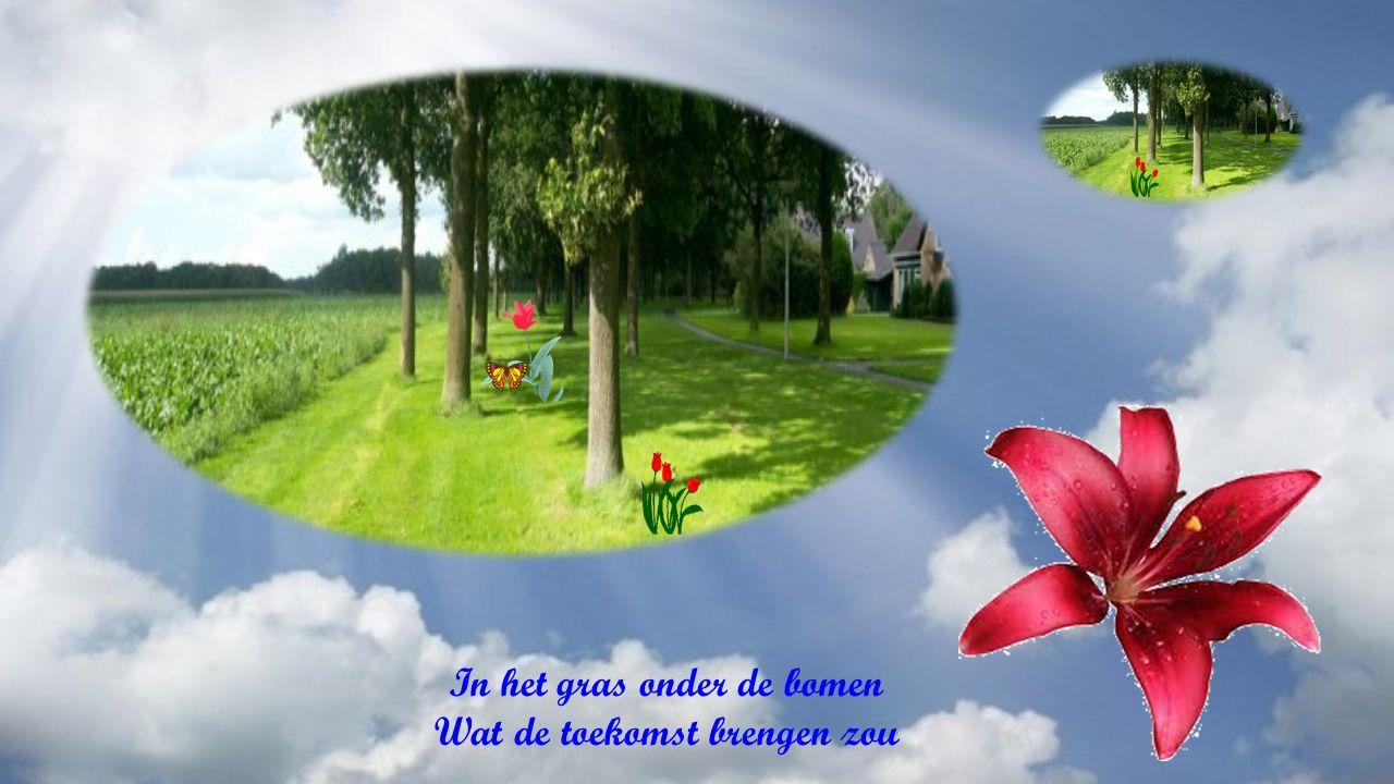 In het gras onder de bomen Wat de toekomst brengen zou