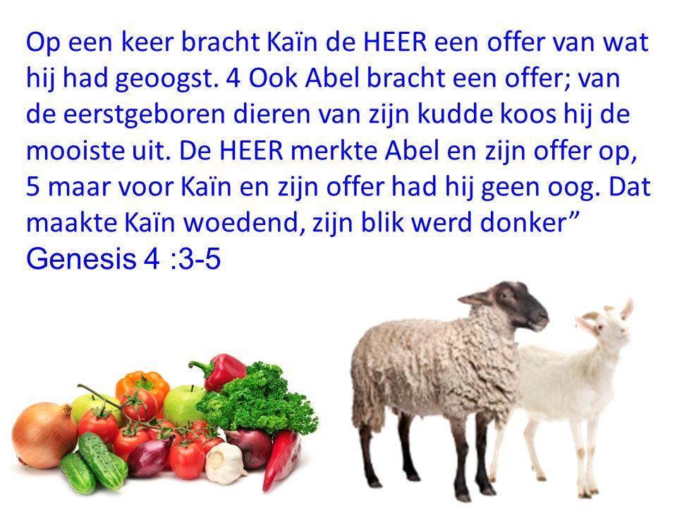 Op een keer bracht Kaïn de HEER een offer van wat hij had geoogst. 4 Ook Abel bracht een offer; van de eerstgeboren dieren van zijn kudde koos hij de