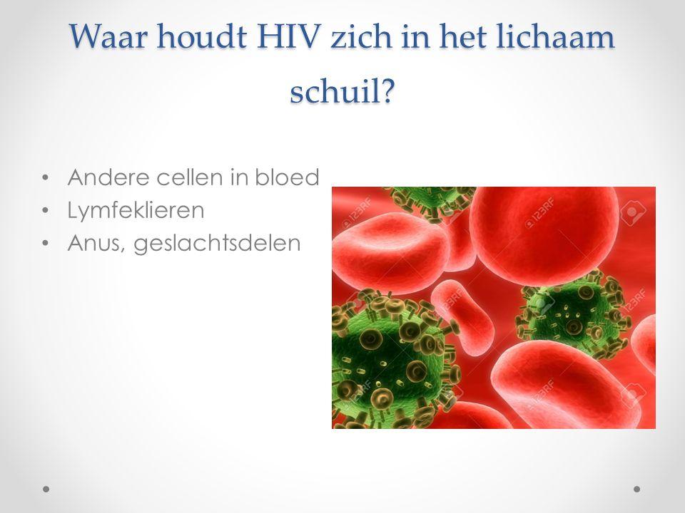 Waar houdt HIV zich in het lichaam schuil Andere cellen in bloed Lymfeklieren Anus, geslachtsdelen
