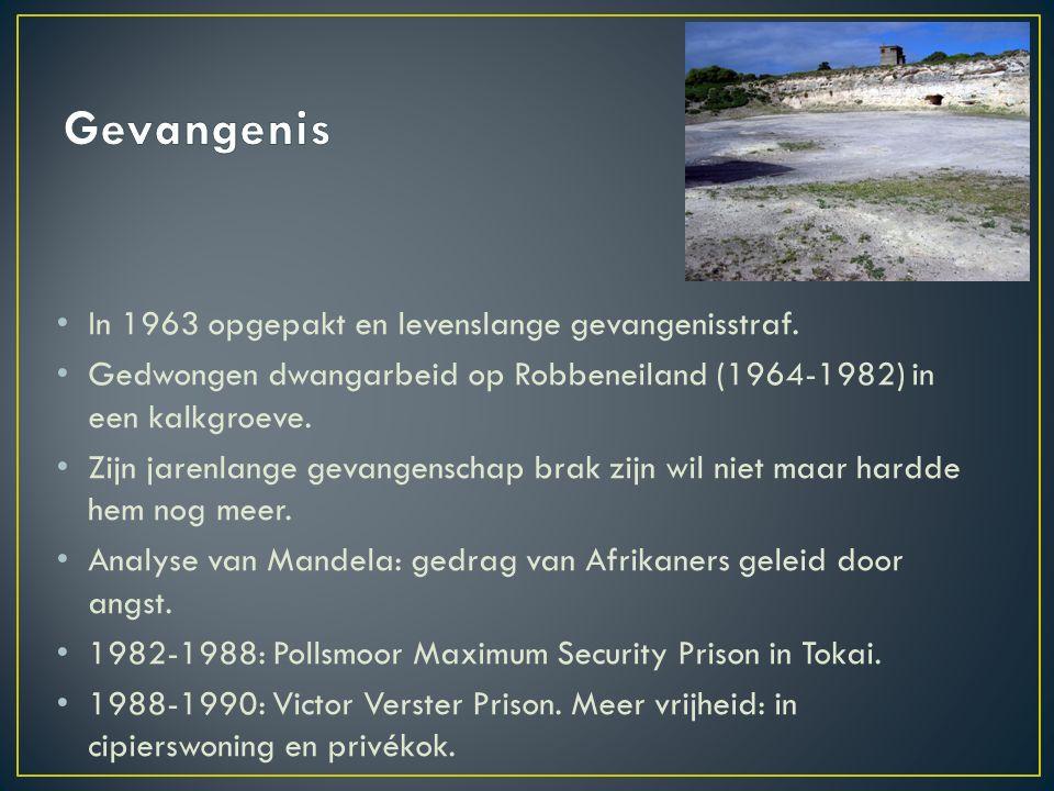 In 1963 opgepakt en levenslange gevangenisstraf. Gedwongen dwangarbeid op Robbeneiland (1964-1982) in een kalkgroeve. Zijn jarenlange gevangenschap br