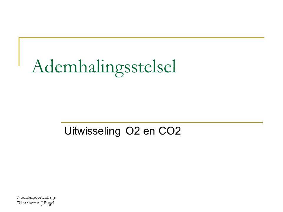 Noorderpoortcollege Winschoten J.Bugel astma
