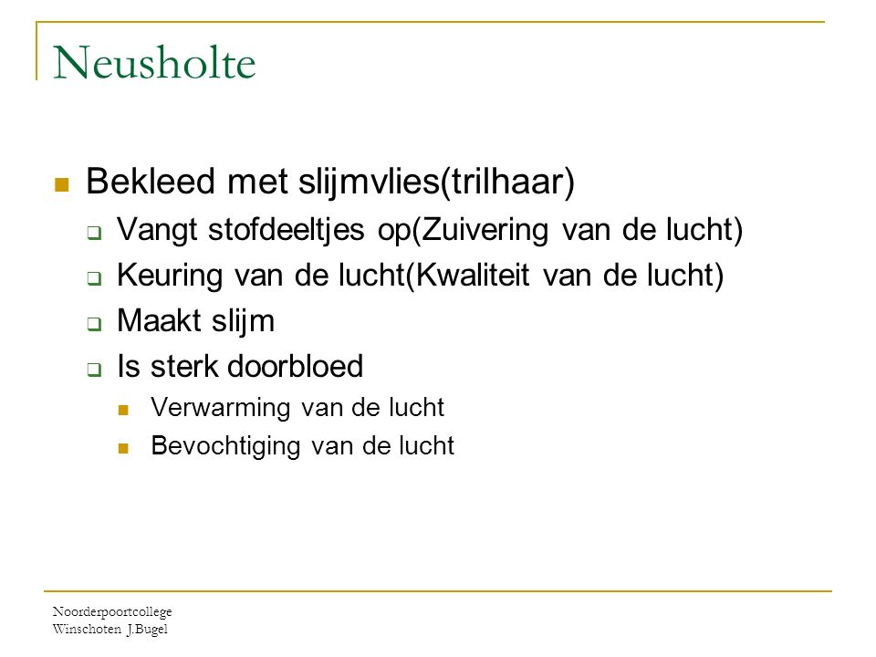 Noorderpoortcollege Winschoten J.Bugel Neusholte Bekleed met slijmvlies(trilhaar)  Vangt stofdeeltjes op(Zuivering van de lucht)  Keuring van de luc