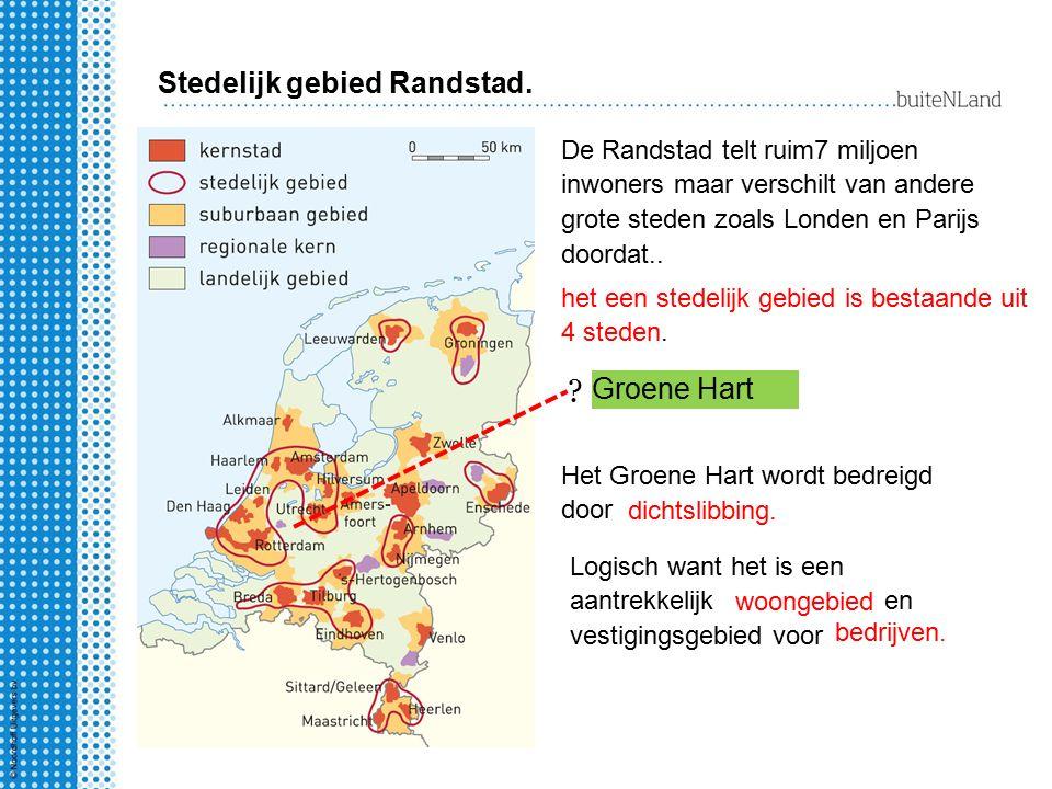 Groene Hart Stedelijk gebied Randstad. ? De Randstad telt ruim7 miljoen inwoners maar verschilt van andere grote steden zoals Londen en Parijs doordat