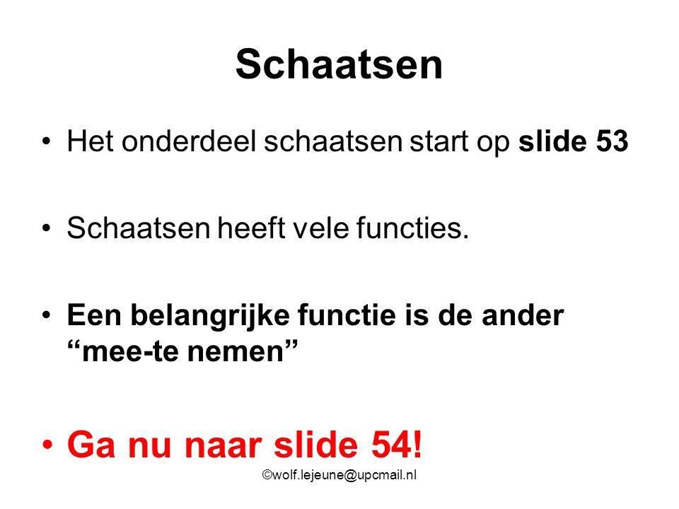 """Schaatsen Het onderdeel schaatsen start op slide 53 Schaatsen heeft vele functies. Een belangrijke functie is de ander """"mee-te nemen"""" Ga nu naar slide"""