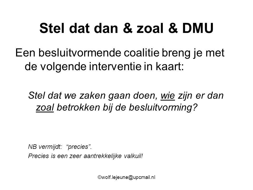 Stel dat dan & zoal & DMU Een besluitvormende coalitie breng je met de volgende interventie in kaart: Stel dat we zaken gaan doen, wie zijn er dan zoa