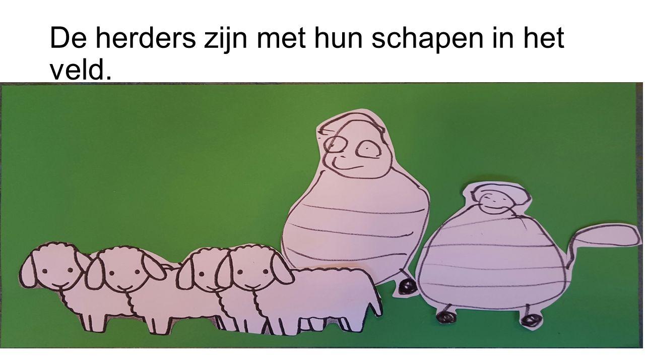 De herders zijn met hun schapen in het veld.
