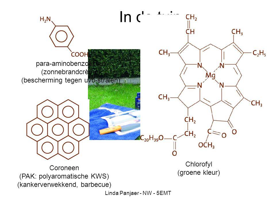 Linda Panjaer - NW - 5EMT In de tuin para-aminobenzoëzuur (zonnebrandcrème) (bescherming tegen uvb-stralen) Coroneen (PAK: polyaromatische KWS) (kanke