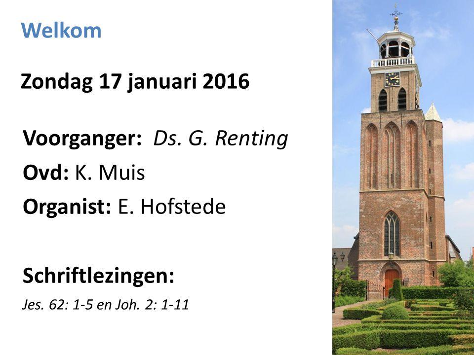 Welkom Zondag 17 januari 2016 Voorganger: Ds. G. Renting Ovd: K. Muis Organist: E. Hofstede Schriftlezingen: Jes. 62: 1-5 en Joh. 2: 1-11