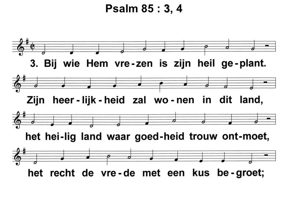 3 Psalm 85 : 3, 4