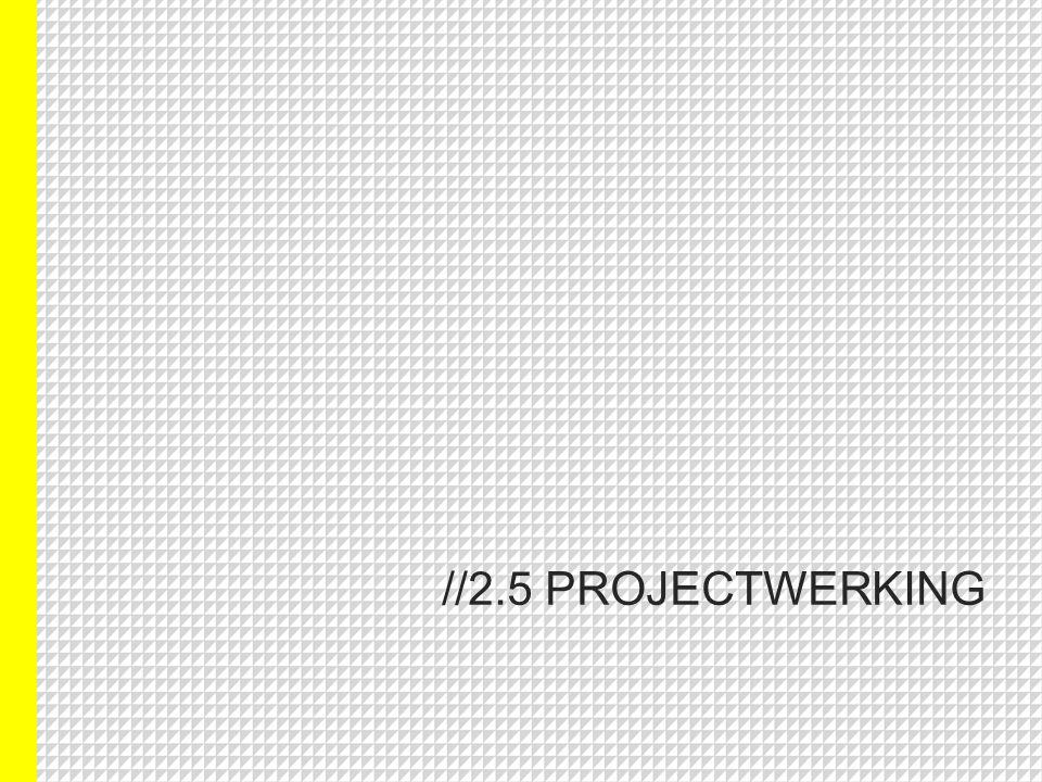 //2.5 PROJECTWERKING