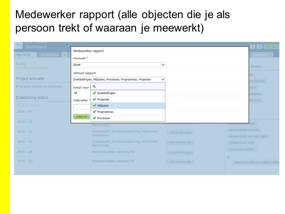 Medewerker rapport (alle objecten die je als persoon trekt of waaraan je meewerkt)