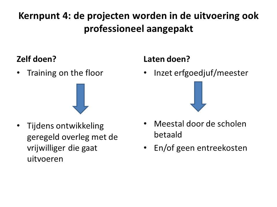 Kernpunt 4: de projecten worden in de uitvoering ook professioneel aangepakt Zelf doen.