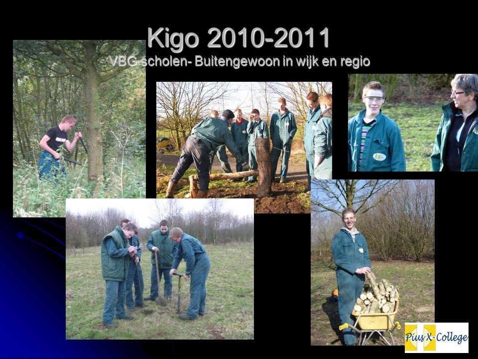 Kigo 2010-2011 VBG scholen- Buitengewoon in wijk en regio