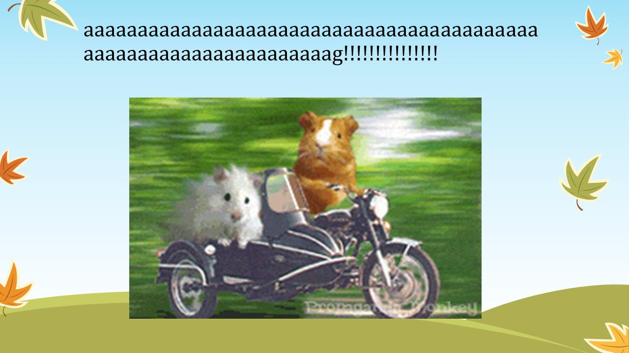 aaaaaaaaaaaaaaaaaaaaaaaaaaaaaaaaaaaaaaaaaa aaaaaaaaaaaaaaaaaaaaaaag!!!!!!!!!!!!!!!