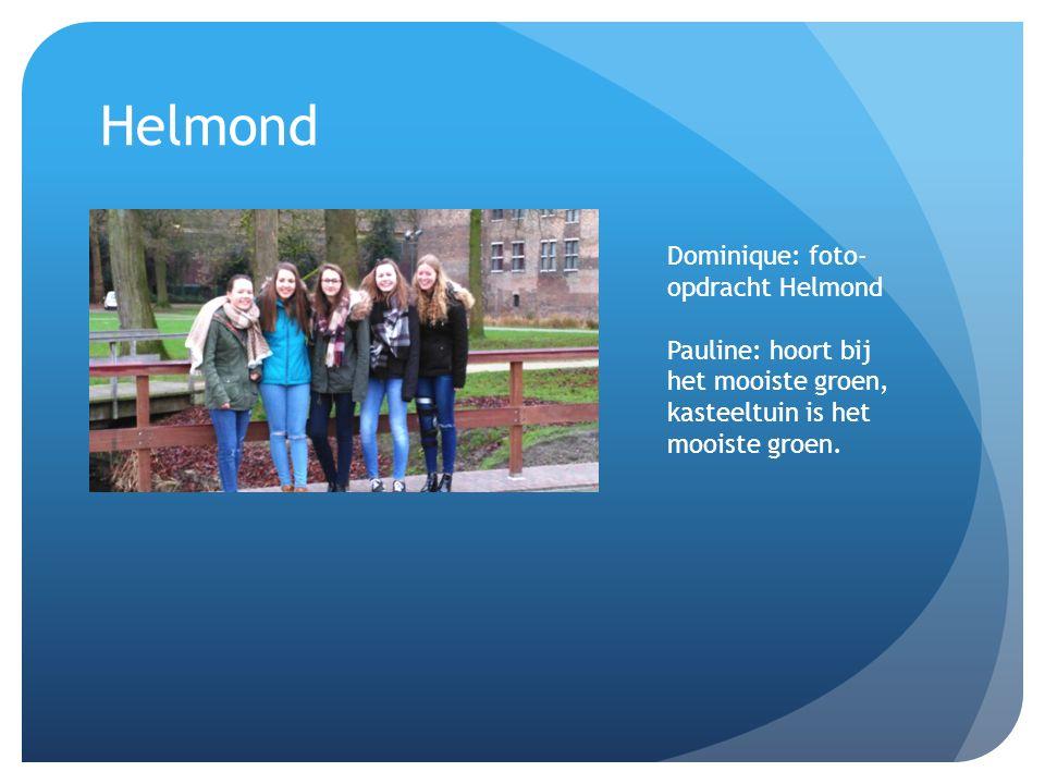 Helmond Dominique: foto- opdracht Helmond Pauline: hoort bij het mooiste groen, kasteeltuin is het mooiste groen.