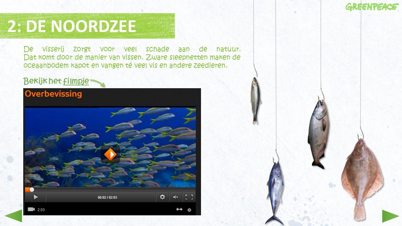 2: DE NOORDZEE De visserij zorgt voor veel schade aan de natuur. Dat komt door de manier van vissen. Zware sleepnetten maken de oceaanbodem kapot en v