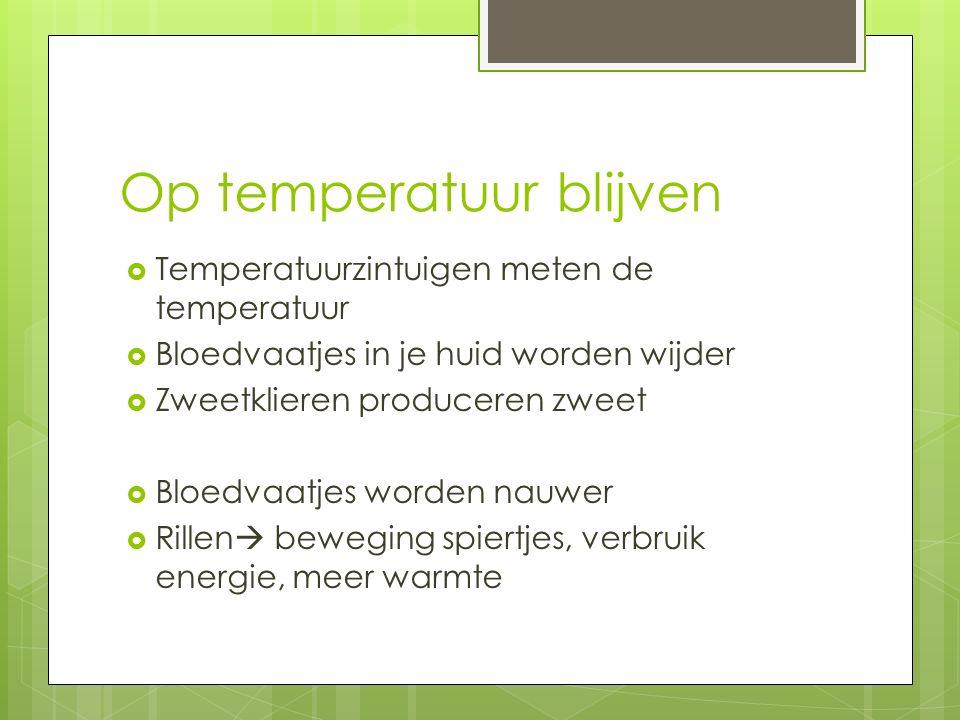 Op temperatuur blijven  Temperatuurzintuigen meten de temperatuur  Bloedvaatjes in je huid worden wijder  Zweetklieren produceren zweet  Bloedvaatjes worden nauwer  Rillen  beweging spiertjes, verbruik energie, meer warmte