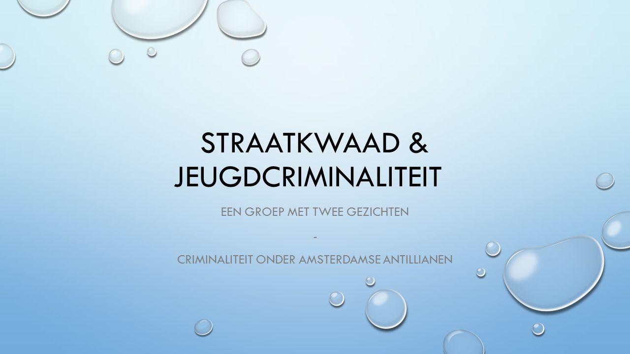 STRAATKWAAD & JEUGDCRIMINALITEIT EEN GROEP MET TWEE GEZICHTEN - CRIMINALITEIT ONDER AMSTERDAMSE ANTILLIANEN