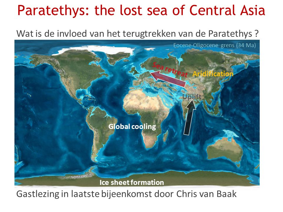 Paratethys: the lost sea of Central Asia Sea retreat Uplift Aridification Ice sheet formation Global cooling Eocene-Oligocene grens (34 Ma) Wat is de