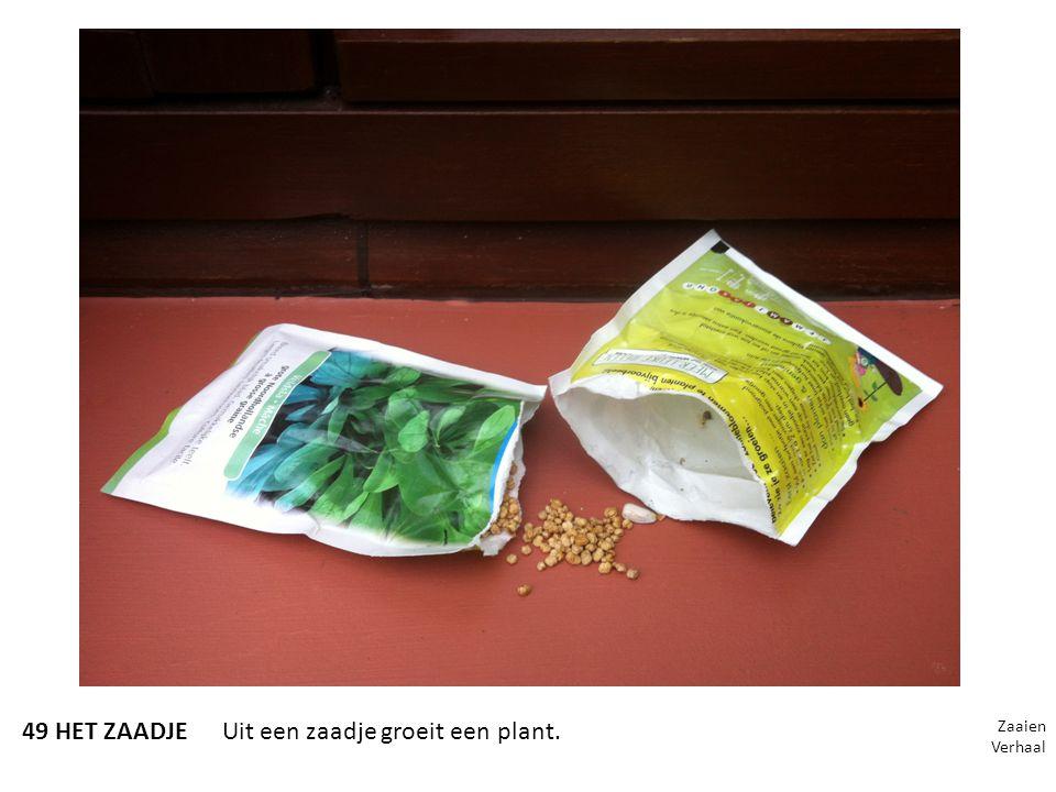49 HET ZAADJEUit een zaadje groeit een plant. Zaaien Verhaal