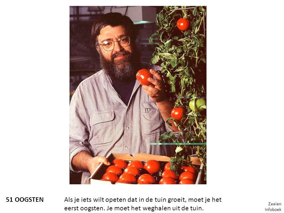 51 OOGSTENAls je iets wilt opeten dat in de tuin groeit, moet je het eerst oogsten. Je moet het weghalen uit de tuin. Zaaien Infoboek