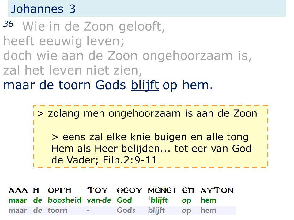 Johannes 3 36 Wie in de Zoon gelooft, heeft eeuwig leven; doch wie aan de Zoon ongehoorzaam is, zal het leven niet zien, maar de toorn Gods blijft op hem.