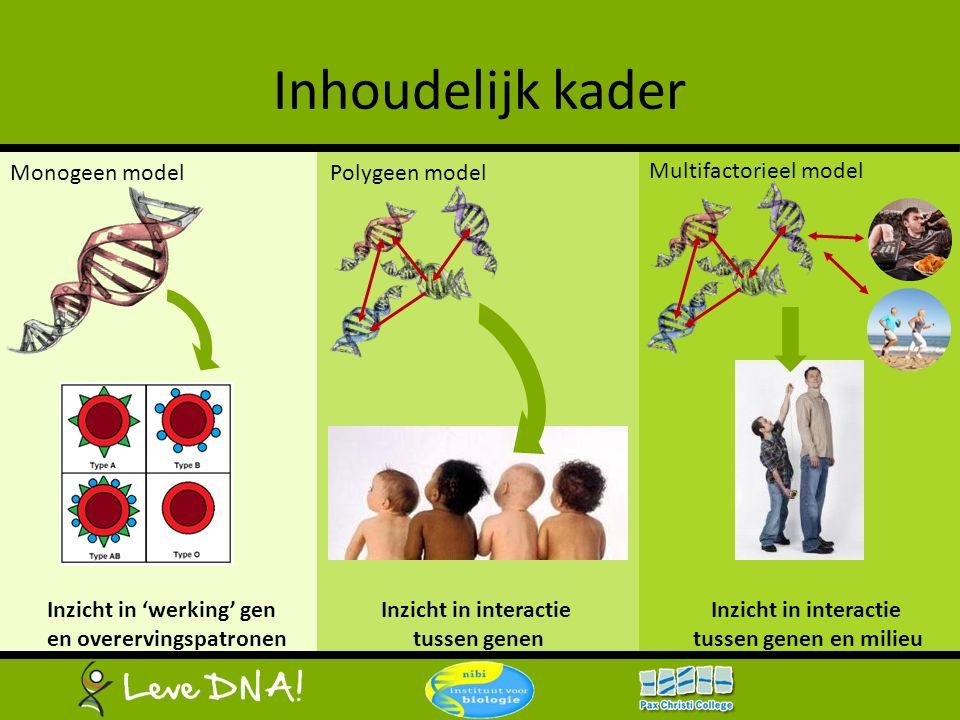 Inhoudelijk kader Monogeen model Polygeen model Multifactorieel model Inzicht in 'werking' gen en overervingspatronen Inzicht in interactie tussen gen