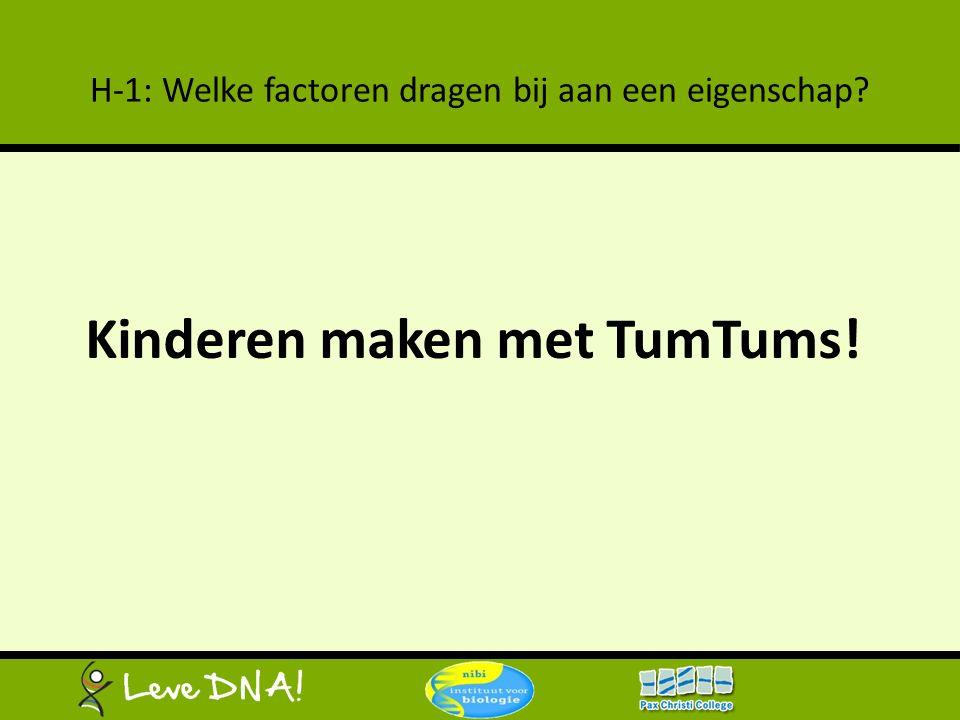 H-1: Welke factoren dragen bij aan een eigenschap? Kinderen maken met TumTums!