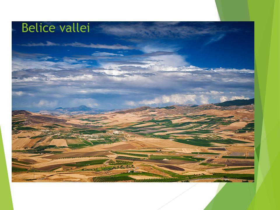 Belice vallei
