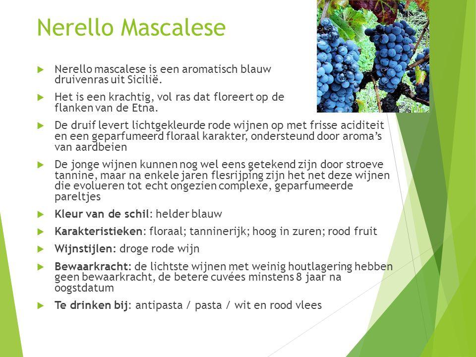 Nerello Mascalese  Nerello mascalese is een aromatisch blauw druivenras uit Sicilië.  Het is een krachtig, vol ras dat floreert op de flanken van de