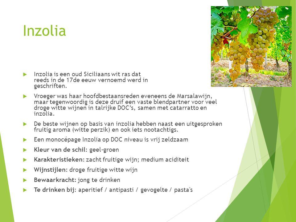 Inzolia  Inzolia is een oud Siciliaans wit ras dat reeds in de 17de eeuw vernoemd werd in geschriften.  Vroeger was haar hoofdbestaansreden eveneens