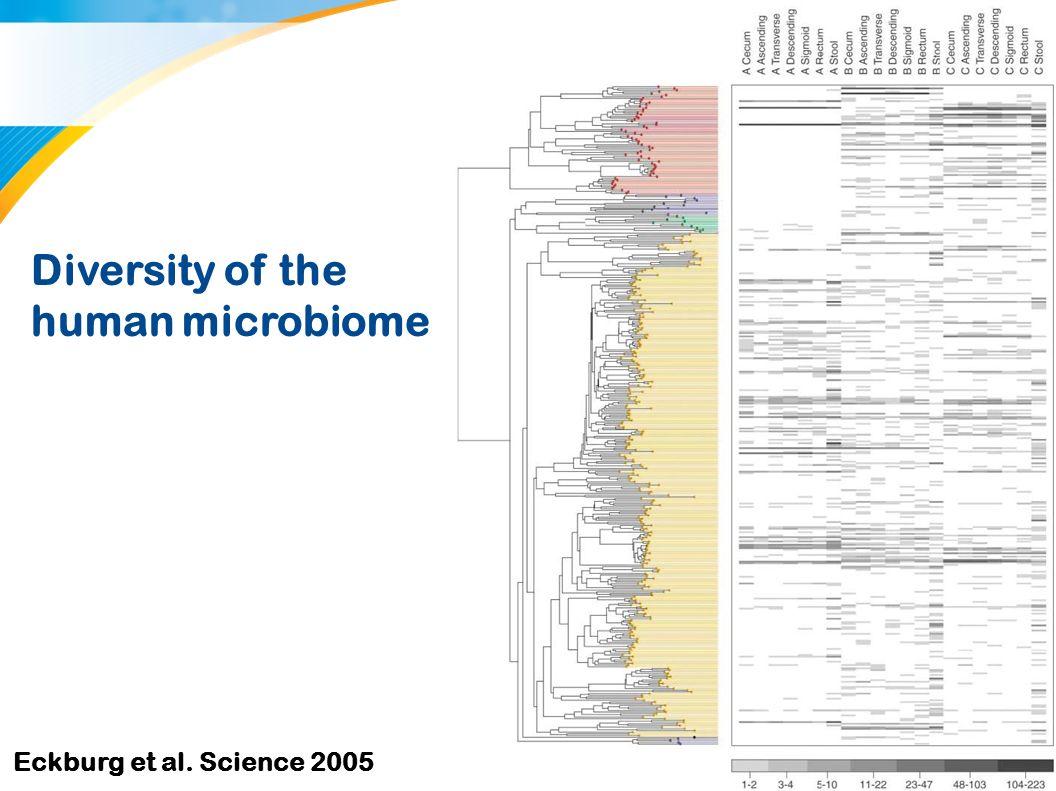 7 Samenstelling humane microbiota