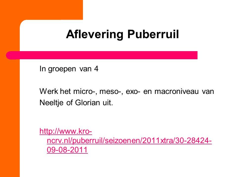 Aflevering Puberruil In groepen van 4 Werk het micro-, meso-, exo- en macroniveau van Neeltje of Glorian uit.
