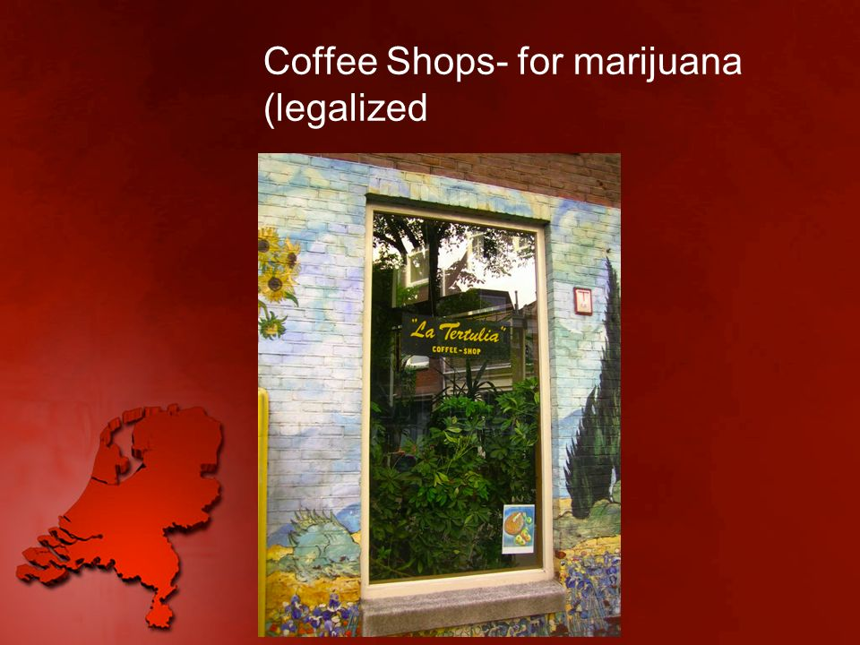 Coffee Shops- for marijuana (legalized