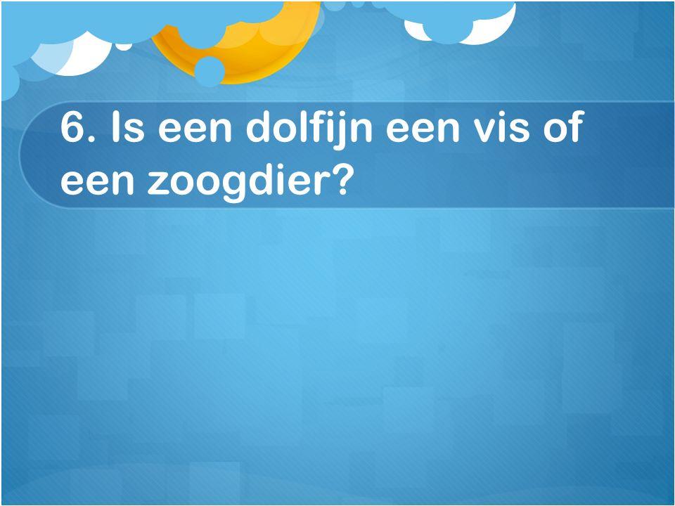 6. Is een dolfijn een vis of een zoogdier?