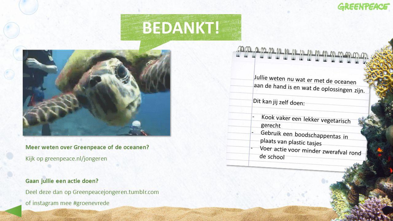 Meer weten over Greenpeace of de oceanen.