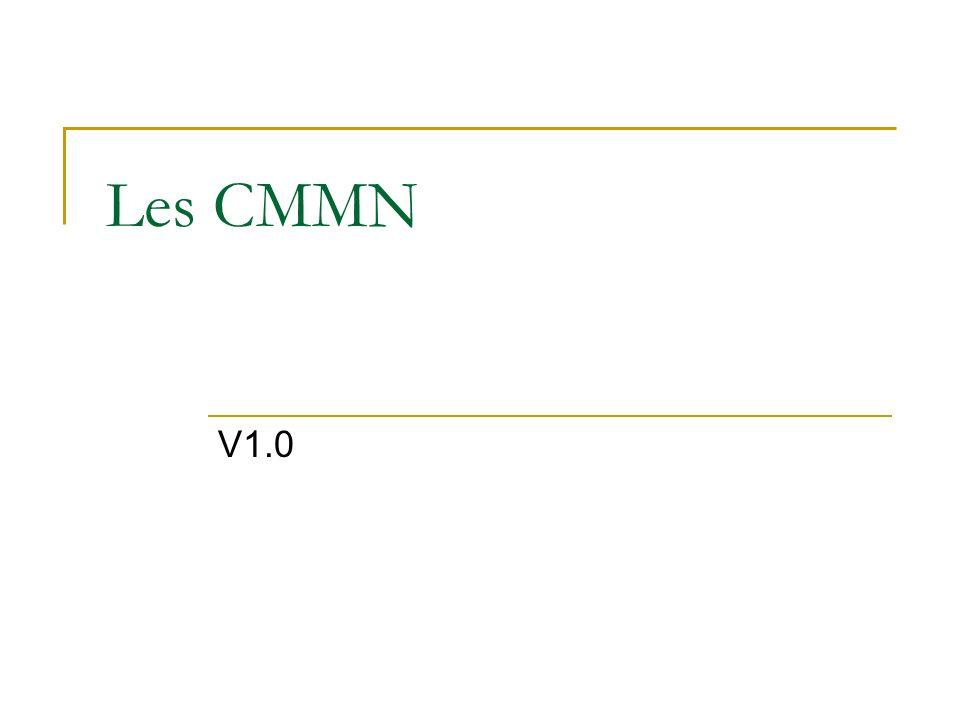 Les CMMN V1.0