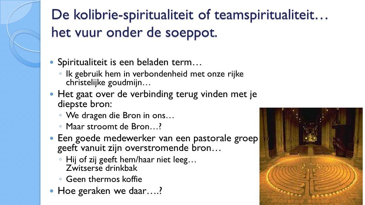 De kolibrie-spiritualiteit of teamspiritualiteit… het vuur onder de soeppot.