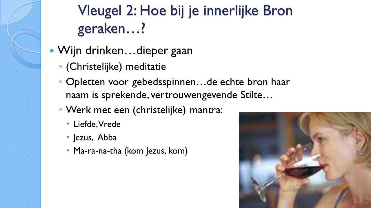 Vleugel 2: Hoe bij je innerlijke Bron geraken….