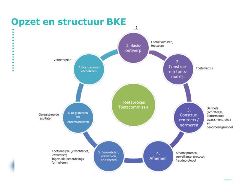 Opzet en structuur BKE