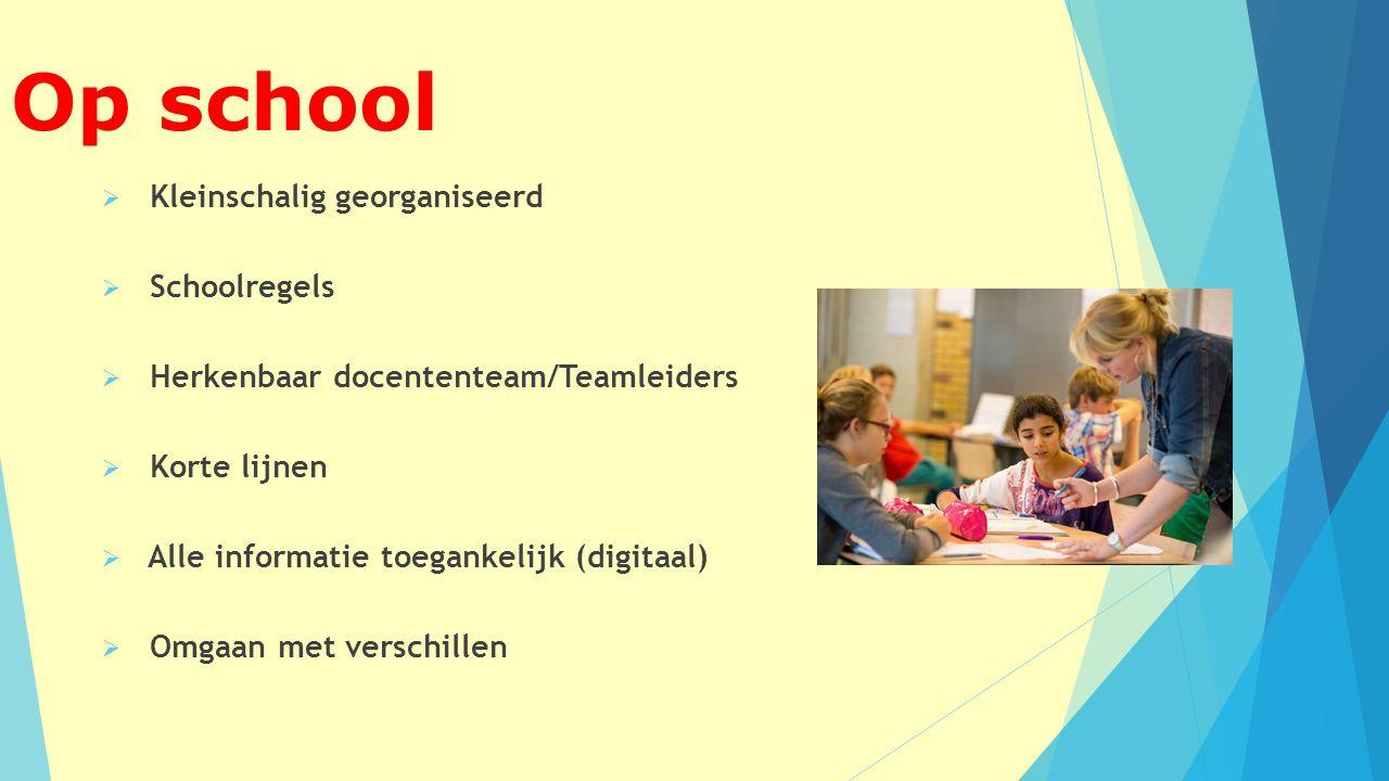 Op school  Kleinschalig georganiseerd  Schoolregels  Herkenbaar docententeam/Teamleiders  Korte lijnen  Alle informatie toegankelijk (digitaal)  Omgaan met verschillen