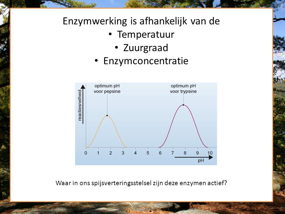 Enzymwerking is afhankelijk van de Temperatuur Zuurgraad Enzymconcentratie Waar in ons spijsverteringsstelsel zijn deze enzymen actief?