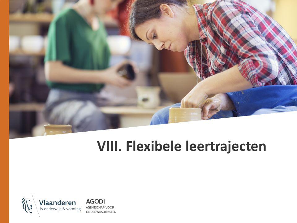 VIII. Flexibele leertrajecten
