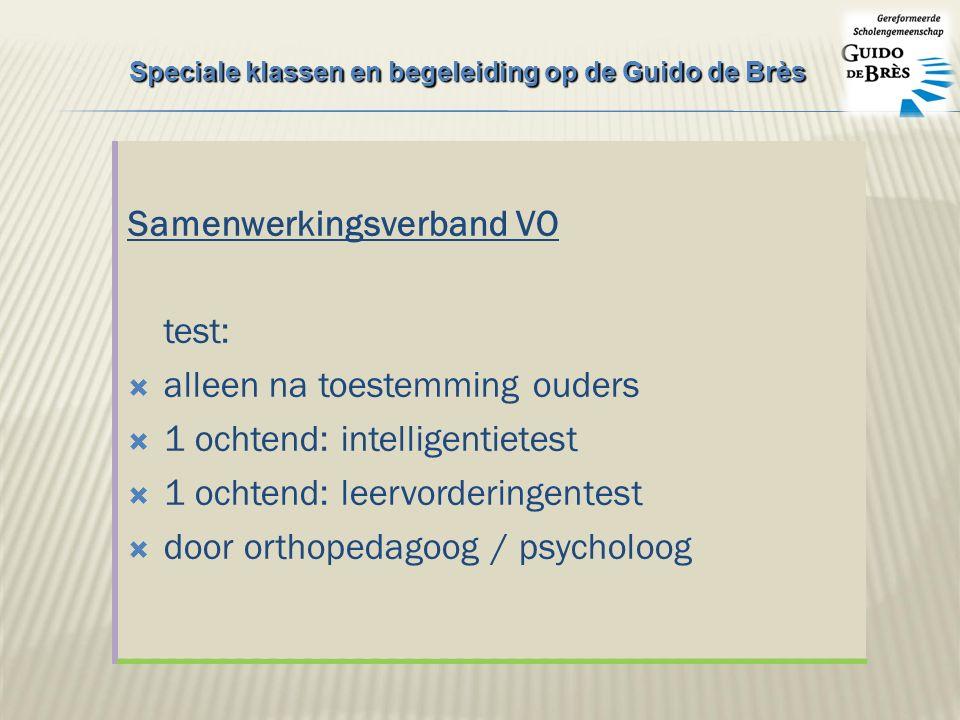 Samenwerkingsverband VO test:  alleen na toestemming ouders  1 ochtend: intelligentietest  1 ochtend: leervorderingentest  door orthopedagoog / psycholoog Speciale klassen en begeleiding op de Guido de Brès