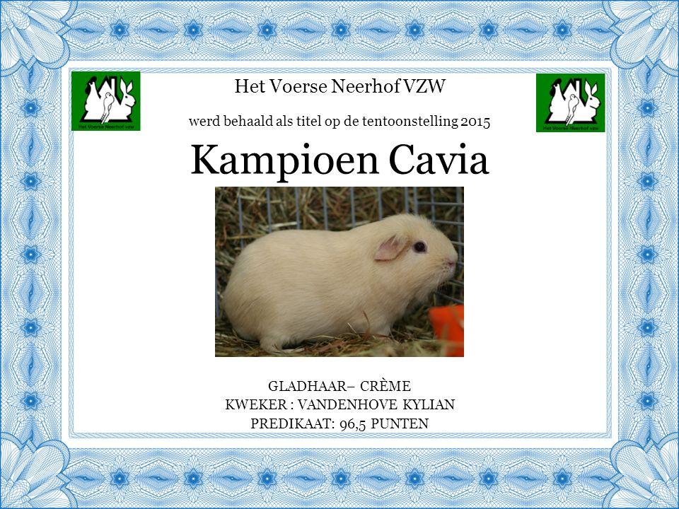 Het Voerse Neerhof VZW GLADHAAR– CRÈME KWEKER : VANDENHOVE KYLIAN PREDIKAAT: 96,5 PUNTEN Kampioen Cavia werd behaald als titel op de tentoonstelling 2015