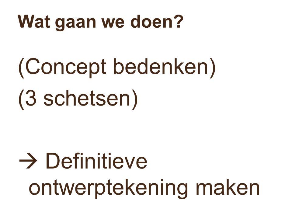 Wat gaan we doen? (Concept bedenken) (3 schetsen)  Definitieve ontwerptekening maken