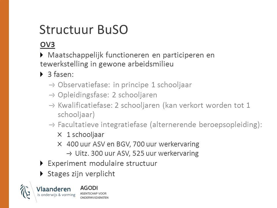 Structuur BuSO OV3 Maatschappelijk functioneren en participeren en tewerkstelling in gewone arbeidsmilieu 3 fasen: Observatiefase: in principe 1 schoo